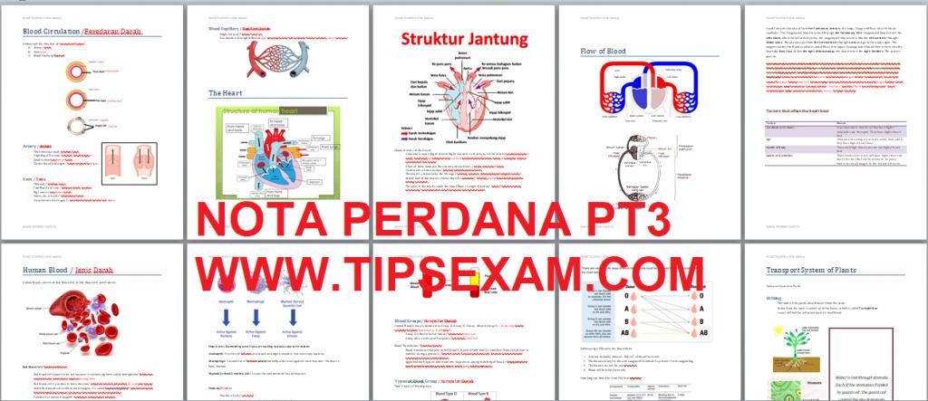 Pt3 Science Dskp Kssm Notes Exam Tips Upsr Pt3 Spm 2020 2021